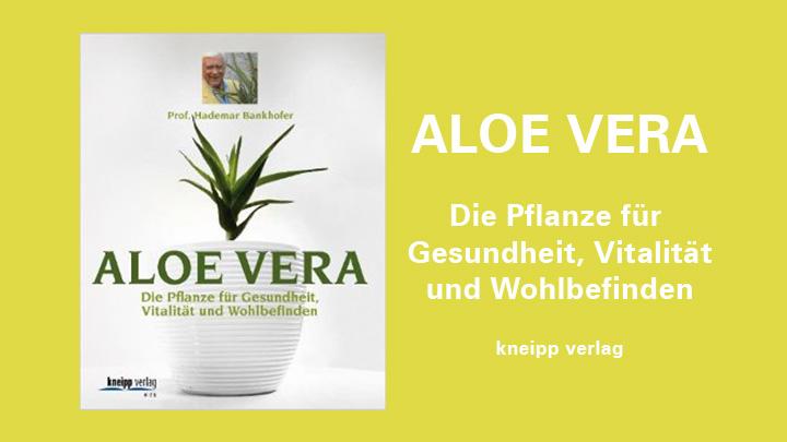 buchtipp aloe vera die pflanze f r gesundheit. Black Bedroom Furniture Sets. Home Design Ideas