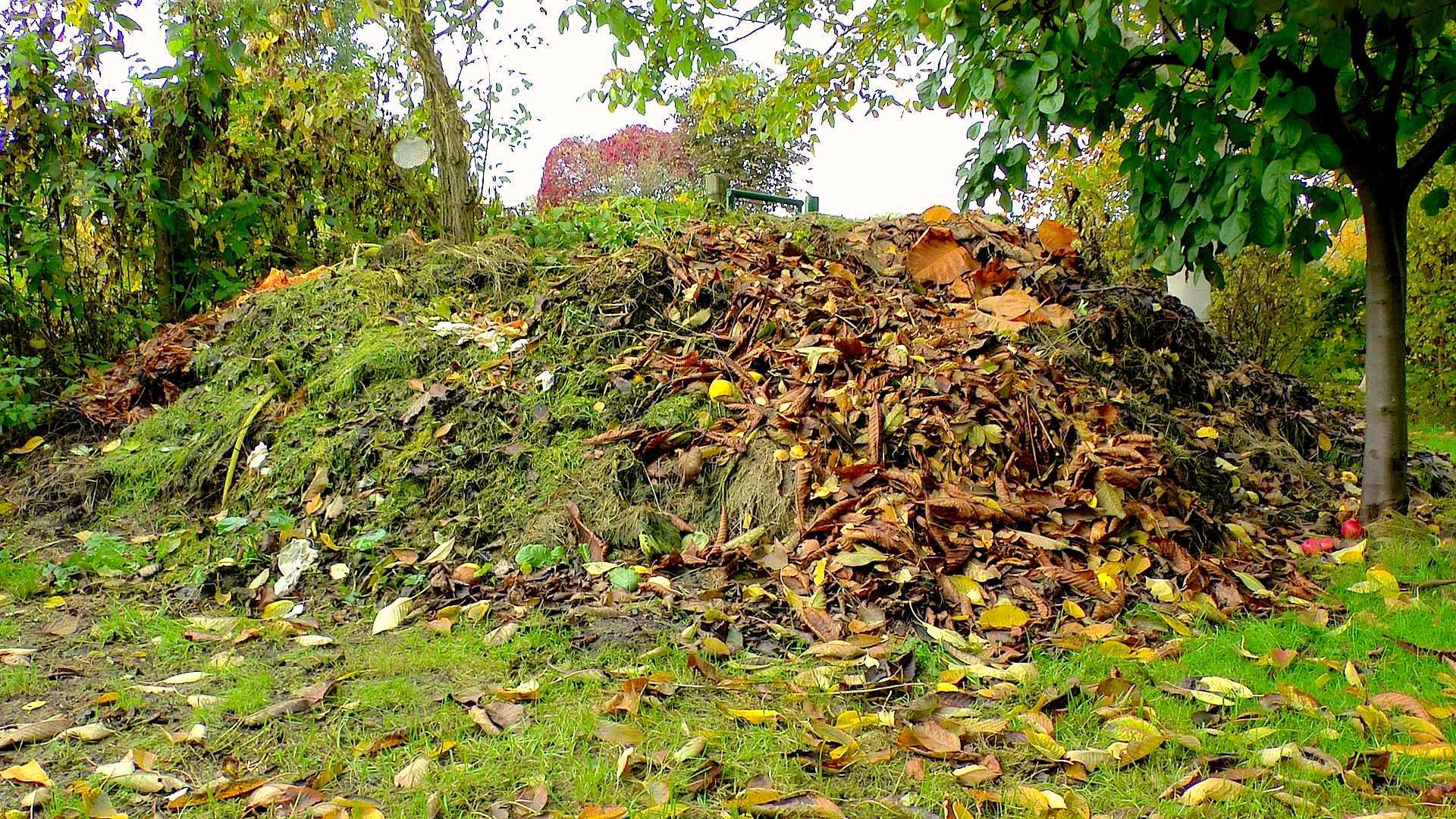 akb-komposthaufen-herbst