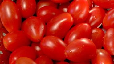 akb-tomate