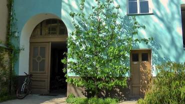 apfelbaum-spalier