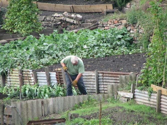 In einem Nutzgarten wie diesem wird mit Spaten und Hacke gearbeitet. pixabay.com © AKA-Ralph (CC0 Public Domain)