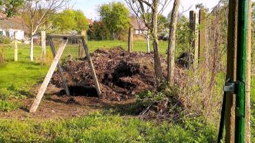 kompost-ernten