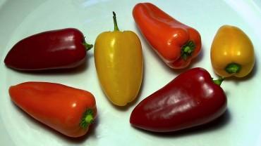 paprika-klein-sweet-paprika