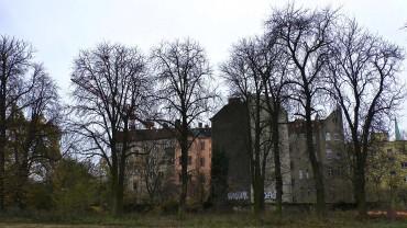 rosskastanie-winter-kahl