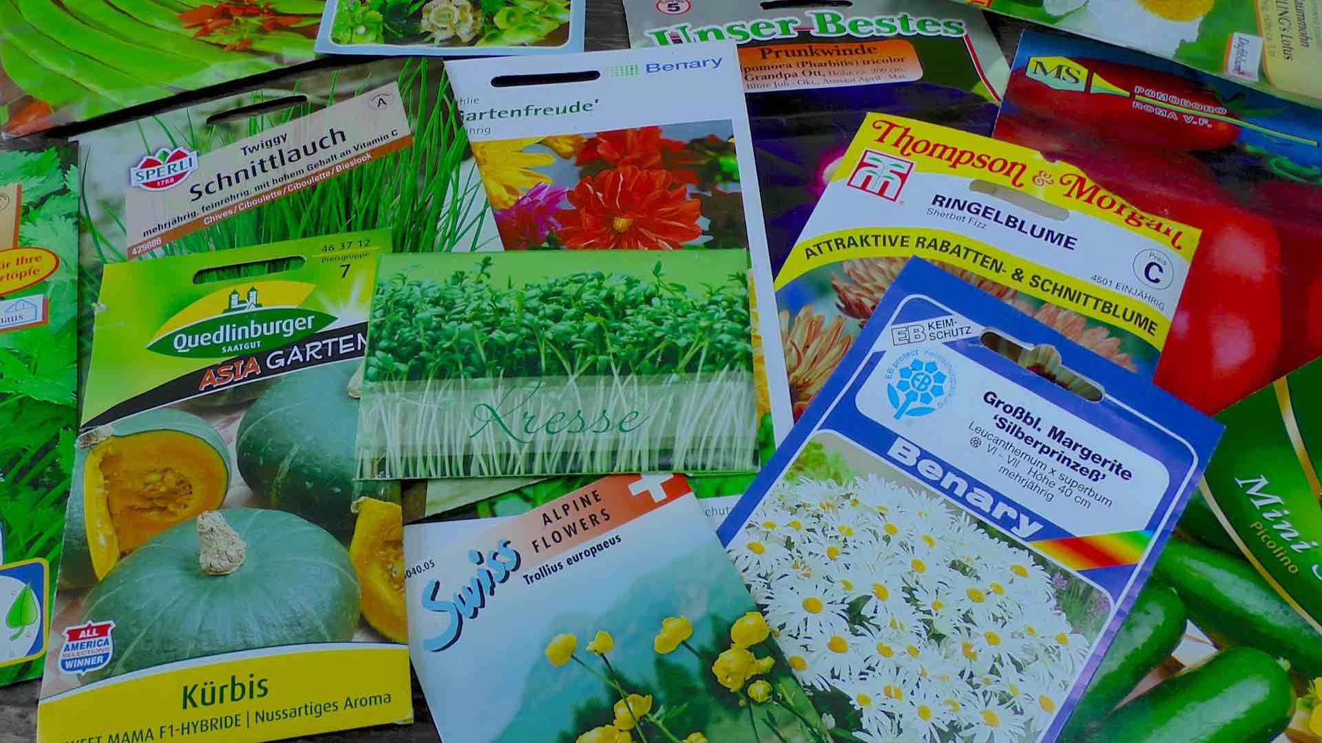 Pflanzen Aus Samen Selbst Ziehen Gartennatur