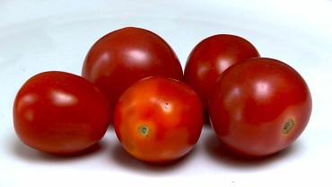 tomate-frucht-cherry
