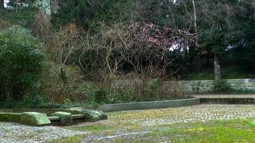 winterschneeball-winter-park